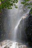 Водопад в лете Стоковые Изображения