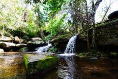 Водопад в джунглях Стоковая Фотография