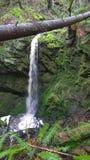 Водопад в заколдованном лесе, южном острове Pender Стоковое фото RF