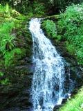 Водопад в зеленой сельской местности Стоковая Фотография