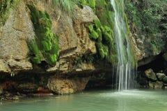 Водопад в Испании, Campdevanol/Ripoll Стоковое Изображение RF