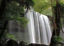 Водопад в национальном парке Тасмании поля держателя Стоковая Фотография RF