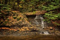 Водопад в осени Стоковые Изображения