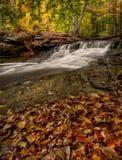 Водопад в осени Стоковое Изображение