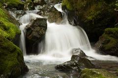 Водопад вдоль реки Chetco, Brookings Стоковые Фотографии RF