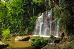 Водопад в природе Стоковые Изображения RF