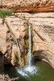 Водопад в пустыне Стоковая Фотография RF