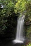 Водопад в пуще Стоковое Фото