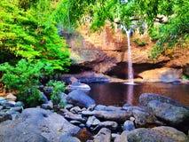 Водопад в пуще Стоковые Фотографии RF