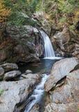 Водопад в древесинах Стоковая Фотография