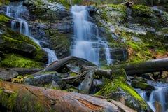 Водопад в северной Монтане Стоковое Фото