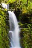 Водопад в северной Монтане Стоковые Фото