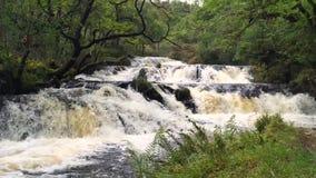 Водопад в северо-западе Шотландии видеоматериал