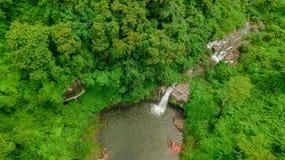 Водопад в середине взгляда глаза птицы леса, трутень Стоковое Изображение