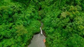 Водопад в середине взгляда глаза птицы леса, трутень Стоковая Фотография