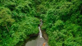 Водопад в середине взгляда глаза птицы леса, трутень Стоковое фото RF