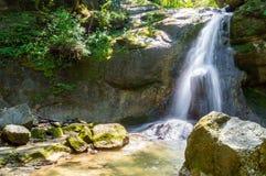Водопад в темном лесе Стоковая Фотография RF
