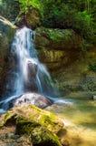Водопад в темном лесе Стоковые Изображения
