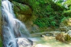 Водопад в темном лесе Стоковое фото RF
