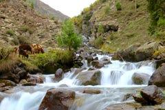 Водопад в тяжёлом ударе, Пакистане Стоковое Изображение