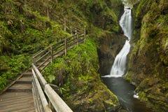 Водопад в Glenariff Forest Park в Северной Ирландии Стоковое Изображение