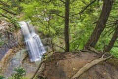 Водопад в gorge Стоковая Фотография RF