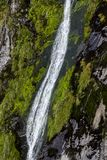 Водопад в Milford Sound Стоковое Фото