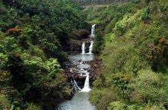 Водопад Гаваи тропический Стоковые Изображения RF