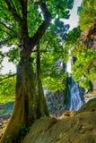 водопад глубокого национального парка горы пущи тайский В глубоком лесе Стоковое Изображение