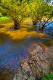 водопад глубокого национального парка горы пущи тайский В глубоком лесе Стоковое Фото