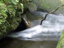 водопад глубокого национального парка горы пущи тайский В глубоком лесе Стоковая Фотография