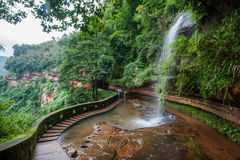 Водопад летания в бамбуковом лесе бамбукового морского района внутри Стоковые Изображения RF