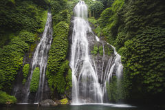 водопад джунглей Стоковые Фотографии RF