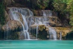 водопад зеленого цвета пущи Стоковое Изображение