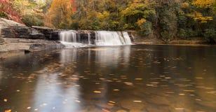 Водопад и лес осенью Стоковое Изображение RF