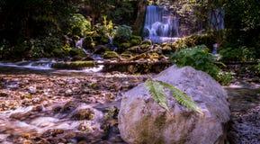 Водопад и лист Стоковая Фотография RF