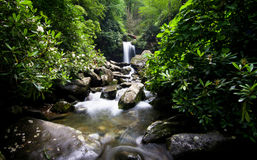 Водопад и каскады в зеленом лесе Стоковые Фото