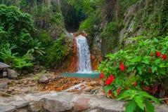 Водопад и красные цветки, Филиппины Валенсия, остров Negros Стоковые Фотографии RF