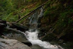 Водопад и река в лесе Стоковое Изображение