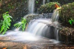 Водопад и утесы покрытые с мхом Стоковая Фотография RF