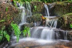 Водопад и утесы покрытые с мхом Стоковые Фотографии RF