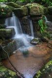 Водопад и утесы покрытые с мхом Стоковые Изображения RF
