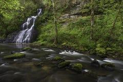 Водопад и Riverflow Стоковые Изображения