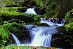 Водопад - каскад в лесе осени Стоковая Фотография