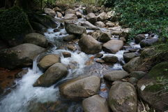 Водопад, который летели через утес стоковое фото rf