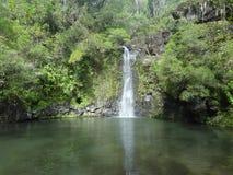 Водопад Мауи стоковые изображения