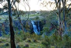 Водопад между деревьями Стоковое Изображение