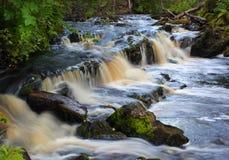 Водопад на долгой выдержке потока леса Стоковое Фото