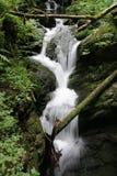 Водопад на реке горы - долгая выдержка Стоковое Изображение