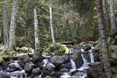 Водопад на реке Murudzhu в горах Кавказа в Стоковые Изображения